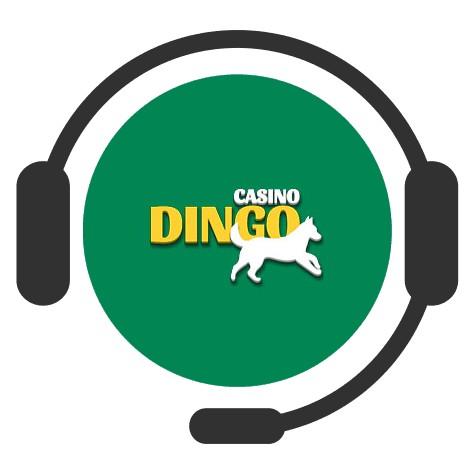Dingo Casino - Support