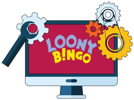 Loony Bingo - Software