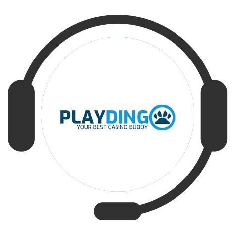 Playdingo - Support
